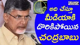అది చేస్తూ మీడియాకి దొరికిపోయిన చంద్రబాబు || CBN caught by Media  ||  Telugu Alerts