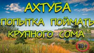 Русская Рыбалка 4 Ахтуба Ловля Сома
