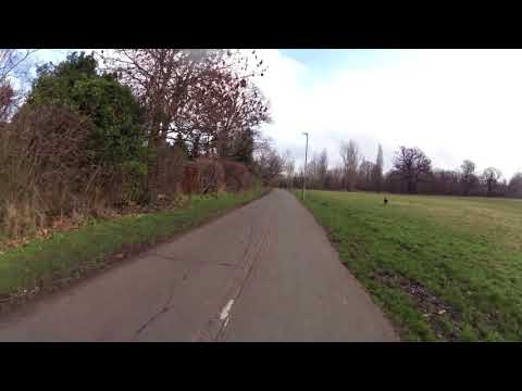 2018-02- Whippet on Tooting-Bec Common