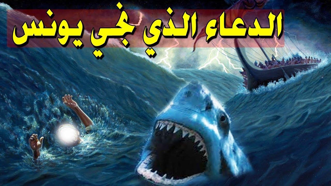الدعاء الذي نجى يونس من بطن الحوت وكيف تدعو به للمولي عز وجل ليقضي لك حاجتك