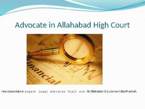 Advocate in Allahabad High Court
