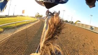Take a ride on Kentucky Oak contender Crazy Beautiful