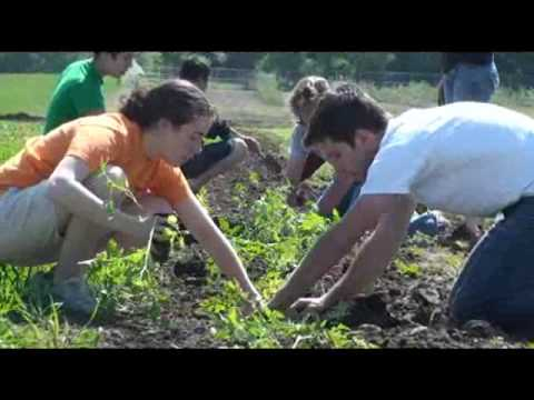 University of Illinois Supplies Cafeterias from Student Farm