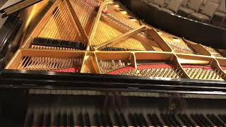 """Excerpt from """"Wing Piano Concerto No. 1"""""""