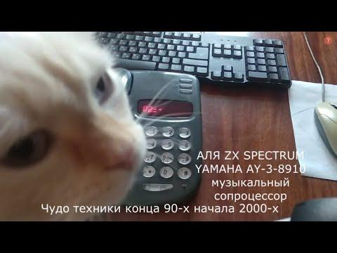 МНОГОФУНКЦИОНАЛЬНЫЙ ТЕЛЕФОН ВЕРСИЯ Русь 28 СОНАТА на микроконтролере  R100-XP