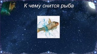 К чему снится Рыба (Сонник)