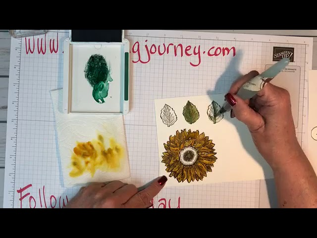 Follow Up Friday Celebrate Sunflowers and watercoloring!