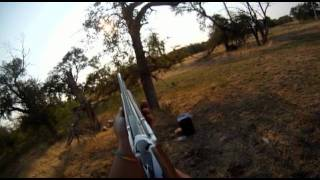 First Person Shooter Opening Day Dove 2011 Frisco Texas