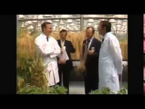 George Bush Sr. visits Monsanto Research facility before Roundup ready soybean is sold