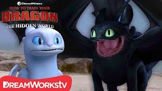 HOW TO TRAIN YOUR DRAGON: THE HIDDEN WORLD | Toothless Falls in Love