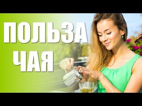 Польза чая. Чем полезен чай