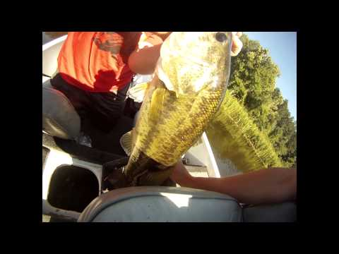 Fishing at Cedar Lake