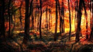 Spirits of Autumn [Autumn Psybient Compilation Vol. 2]