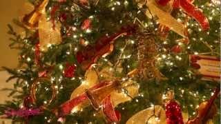 South Dakota: Christmas at the Capitol 2012