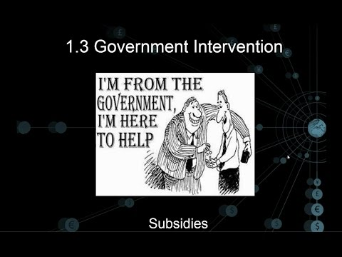 1.3 Government Intervention - Subsidies