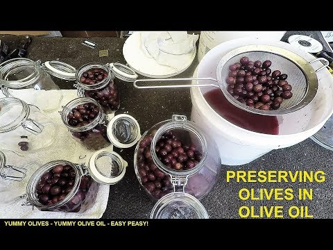 Preserving Olives in Oil - Prepping for SHTF