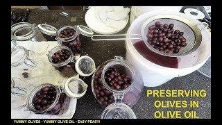 Preserving Olives in Oil - Prepping for SHTF