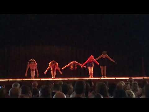 Spice Girls at Dance Inc Gladesville Concert 2017