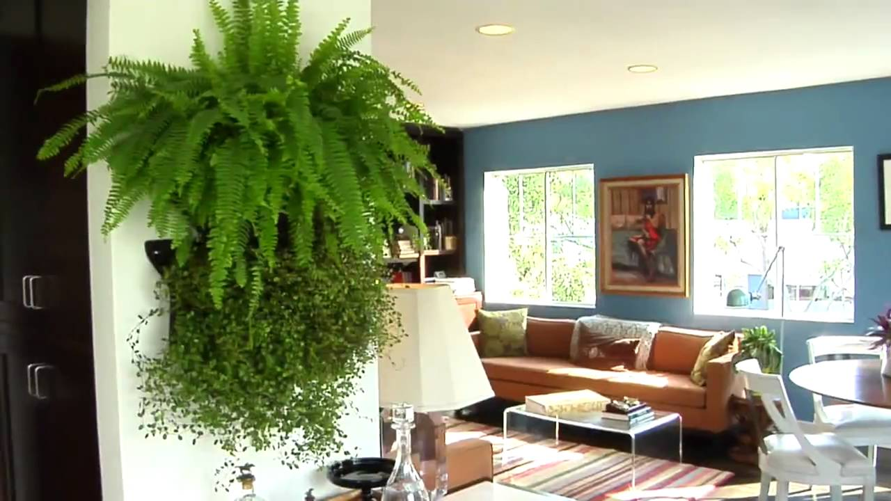 learn how to make your own living wall youtube. Black Bedroom Furniture Sets. Home Design Ideas