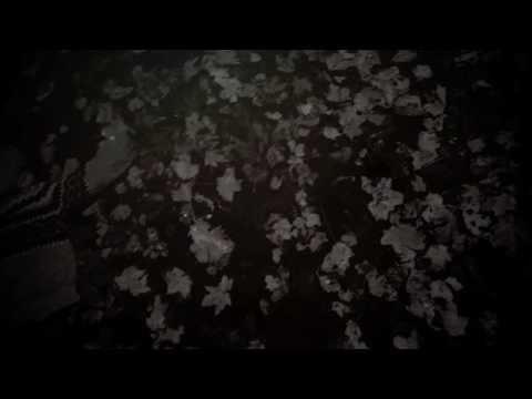 Клип Moddi - Moonchild