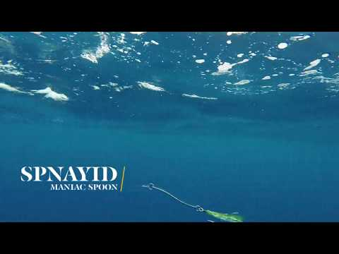 How Lures Swim: Spnayid Maniac Spoon