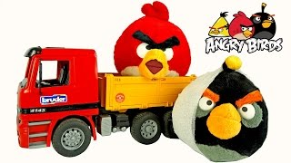 New angry birds! Angry birds go for a walk! Видео с игрушками! 어린이 비디오