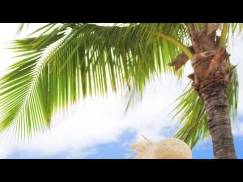 Beautiful Hawaiian Music!   [HD]
