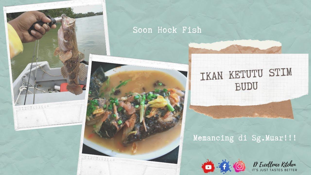 ikan ubi masak stim hybrid art Resepi Sup Ikan Siakap Ala Thai Enak dan Mudah