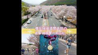 【謝利漫跑韓櫻花馬拉松 Day 4】