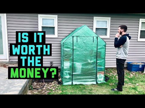 $55 Mini DIY Walk In Greenhouse From Amazon Review After 3 Months, is it worth the money?