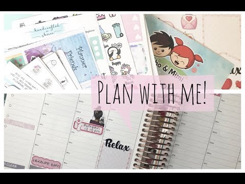 Plan with Me | Erin Condren & B6 Travelers Notebook!