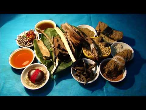 Tribal Herbal Medicines for Cancer Prevention and Cure by Pankaj Oudhia-1141