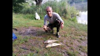 Карповая рыбалка Ловля карпа на горох с попапом