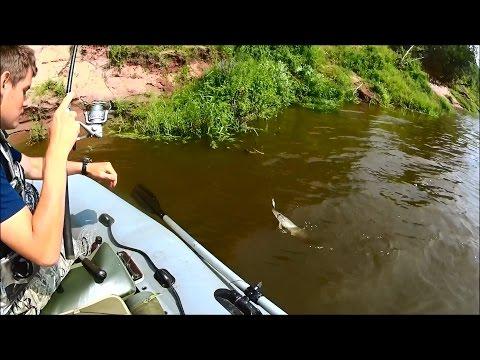 Ловля Окуня на Отводной поводок | Ловля Судака на джиг | Рыбалка с MaxFisher | 1080p | BF-№ 49
