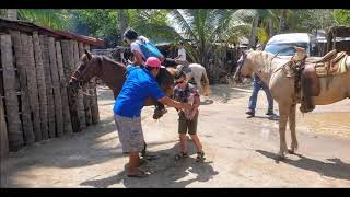 07-06-2019 HORSEBACK RIDING - BABY TURTLE RELEASE by Afonso TourByVan Acapulco