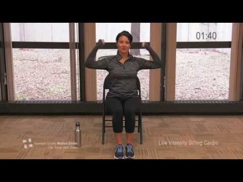 Low-Intensity Seated Cardio Work Out - The Great Slim Down