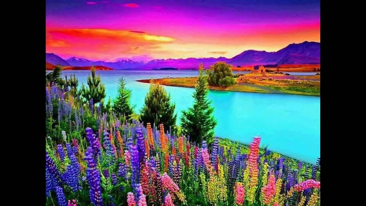 colorful nature relaxing