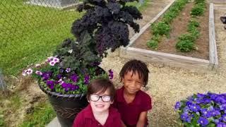 Shenandoah Elementary volunteer video 2018