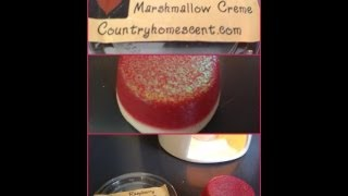 CountryHomeScent - Raspberry Marshmallow Creme Wax tart Review