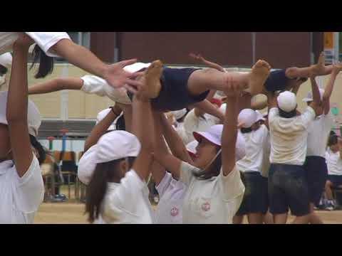 鶴見小学校 運動会 2011/10/2 Part24
