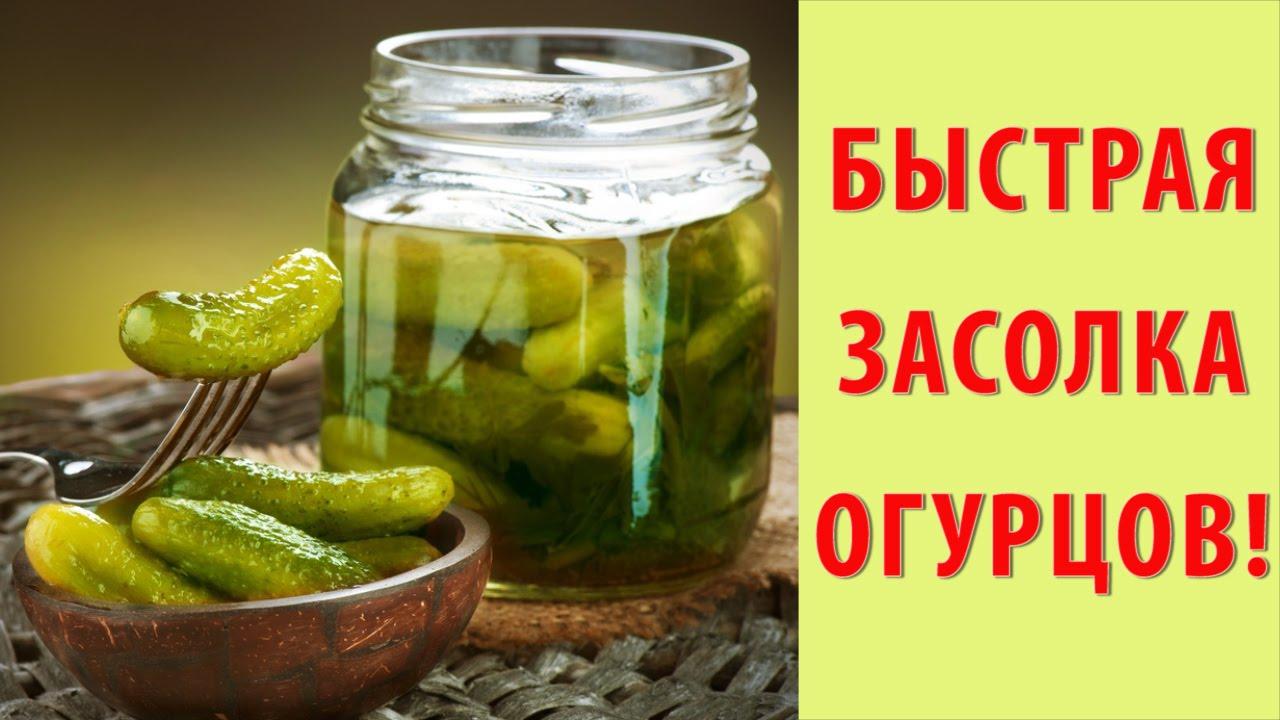 Малосольные огурцы - рецепты: Как быстро приготовить 99