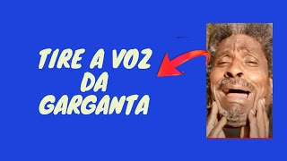 Anselmo Reys - Vídeo - 001 Técnica para soltar a voz  #Tripliqueavozem5minutos.