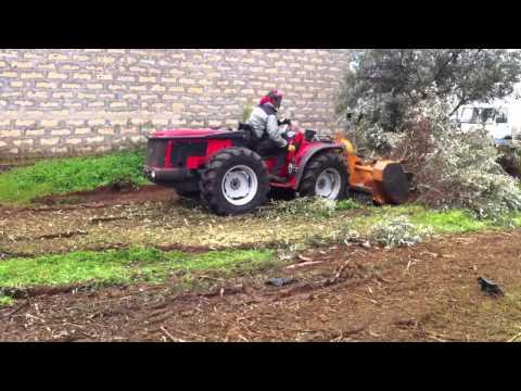 Trattore carraro reversibile 3800 usato con trincia ferri for Di raimondo macchine agricole