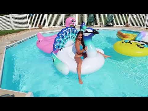 Floatie Kings Review