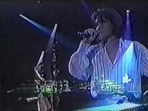 X JAPAN - Tears (Tokyo Dome 1995.12.31)