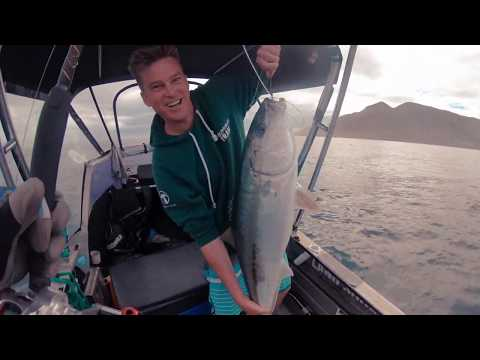 Fishing And Diving Waihau Bay New Zealand, Offshaw Episode One
