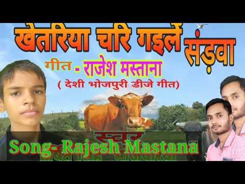 इस छोटे से बच्चे ने भोजपुरी दुनिया में तूफान मचा दिया. #Harshit Singh Bhojpuriya With #RajeshMastana
