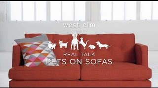 Real Talks: Pets Review West Elm Sofas