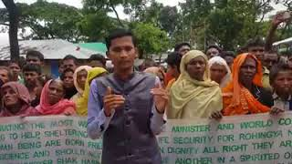 Rohingyas call on PM Sheikh Hasina to repatriate them after ensuring their citizenship rights