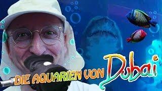 Die Aquarien von Dubai: Jumeirah